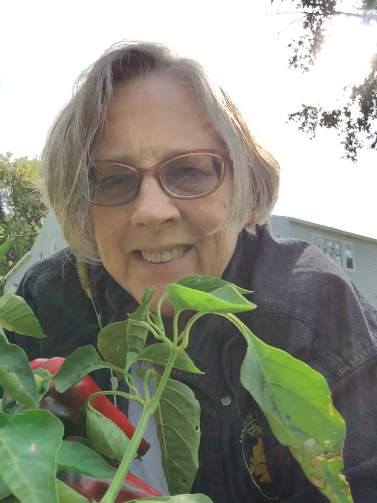 Liz Handler: I gardened like a Delm this year!